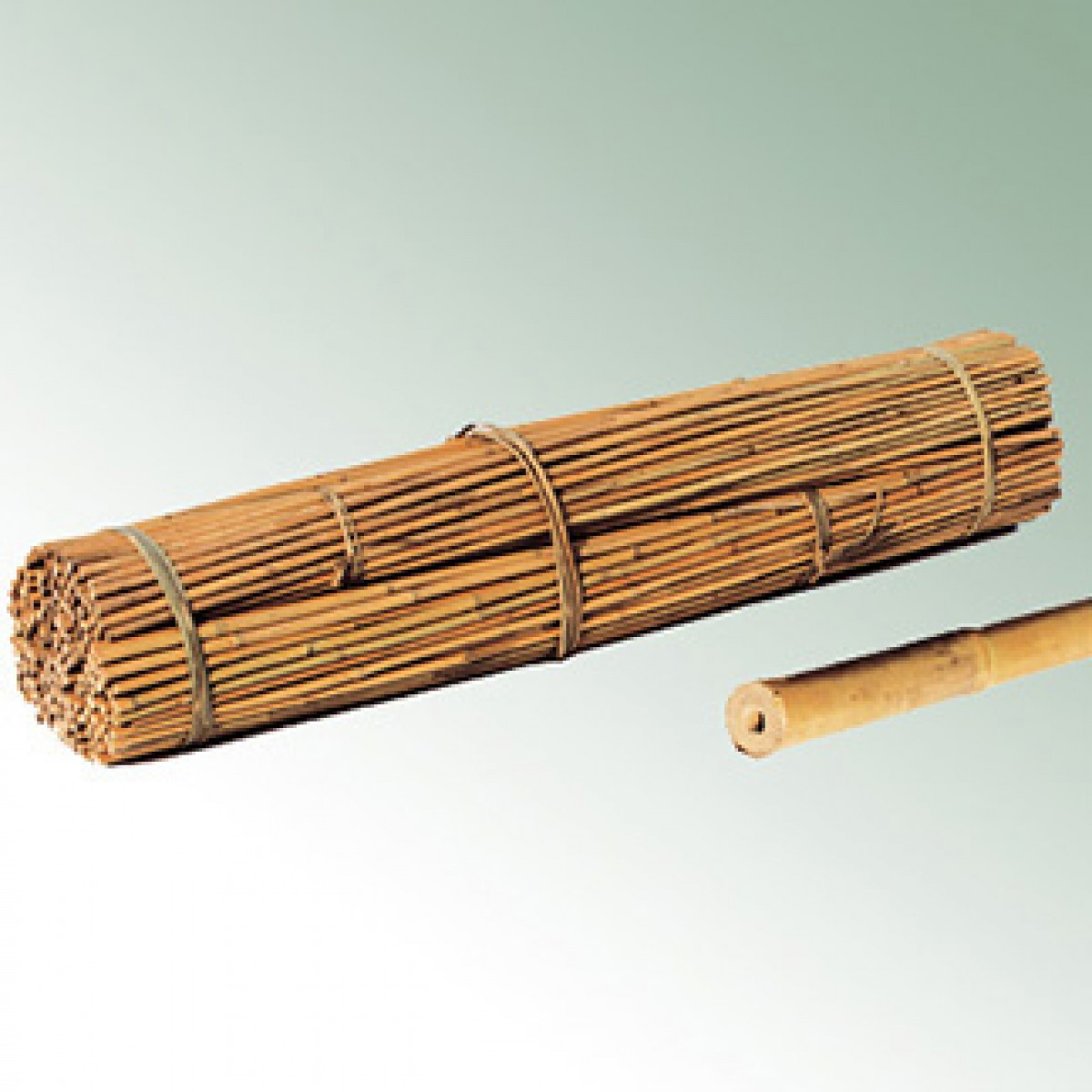 Bamboo canes 91cm 8 10 3 39 bale 1000 units stakes for Uses for bamboo canes