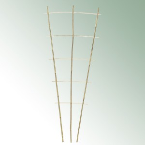 Bamboo Trellis height 85cm - Per pack of 10